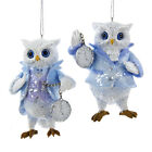 C8907 Frosted Kingdom White Owl with Pocket Watch Glittered Christmas Ornament
