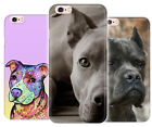 Pit Bull Dog Cute Art Rubber Phone Cover Case fits Apple Iphone X 6 8 7 plus se