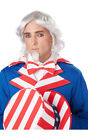 UNCLE SAM WHITE GREY WIG CHIN PATCH ADULT MENS COSTUME ACCESSORY