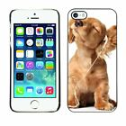 Hard Phone Case Cover Skin For Apple iPhone Funny puppy in headphone
