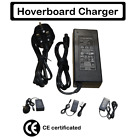 CE UL certificated charger fit ALL size and shape Hoverboards,Swegway