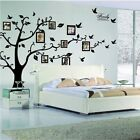 3D DIY Photo Tree Family Large Sticker Bird PVC Wall Decal Mural Art Home Decor