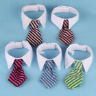 Adjustable Pet Dog Cat Bow Tie Colorful Stripe Bowtie Fashion Accessories SY