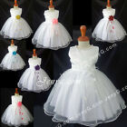 NLW9 Baby Flower Girl Wedding Junior Bridesmaid Holy Communion Formal Gown Dress