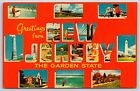 """""""Greetings from New Jersey"""" The Garden State Pictorial Chrome Postcard Unused"""