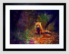 PHOTO PAINTING ANIMAL LONE FOX IN A FOREST FRAMED ART PRINT POSTER  F12X10390
