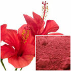 Hibiscus powder, organic, soap making supplies, Natural Colorant.