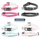 Cat Collar Ancol Safety Buckle & Warning Bell Kitten Jewel Diamante - 4 Colours