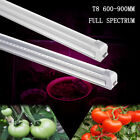 Led Grow Light Full Spectrum T8 Integrated 600-900MM Tube Lamp for Indoor Plant