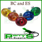 Reptile Basking Heat Lamp Bulb 60w Red Amber Yellow Blue Green BC / ES x1,3 or 5