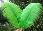 10-200 pcs high-quality natural ostrich feathers 6-24 inch/15-60cm  Green fruit