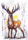 Print or Greeting Card Watercolour Stag by Artist Be Coventry wildlife art
