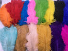 Wholesale 10-100 pcs natural ostrich feathers 6-16 inch/15-4