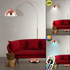 LED Arch Floor Lamp Living Room RGB Remote Control Copper Dimmer Adjustable Lamp