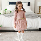 Toddler Kids Baby Girl Winter Skater Dress Long Sleeve Party Dress Skirt Clothes
