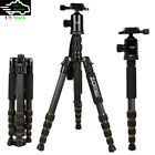 Pro Portable Travel Tripod Monopod Ball Head for DSLR Digita Camera Carbon Fiber