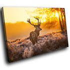A217 Yellow Winter Landscape Stag New Animal Canvas Art Picture Prints