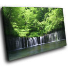 SC420 Green Forest Waterfall  New Scenic Canvas Art Picture Prints