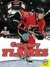 Calgary Flames by Nick Day: New $19.79 USD on eBay