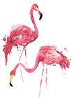 16x20'' Wild Flamingos Diy Paint By Number Kit Acrylic Painting On Canvas Framed