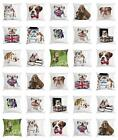 English Bulldog Throw Pillow Cases Cushion Covers Ambesonne Home Decor 8 Sizes