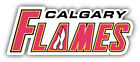 Calgary Flames NHL Hockey Slogan Car Bumper Sticker Decal   - 9'', 12'' or 14'' $11.99 USD on eBay