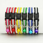 Pet Puppy Cat Kitten Soft Glossy Reflective Collar Safety Buckle with *~