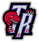 Toronto Raptors Basketball Logo TR Car Bumper Sticker Decal   9'', 12'' or 14'' on eBay