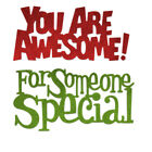 Special Awesome Words Metal Cutting Dies Stencil Scrapbooking Album Embossing