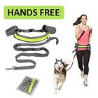 Hands Free Dog Running Harness Jogging Padded Waist Belt Reflective Elastic