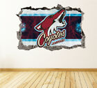 Arizona Coyotes Wall Art Decal Hockey Team 3D Smashed Wall Decor WL05 $36.95 USD on eBay