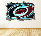 Carolina Hurricanes Wall Art Decal Hockey Team 3D Smashed Wall Decor WL13 $24.95 USD on eBay
