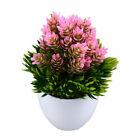 Artificial Potted Plant Fake Plastic Flowers Office Desk Home windowsill Decor