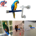 Parrot Folding Bath Shower Standing Platform Rack Perch Wall Suction Cup Pet Toy