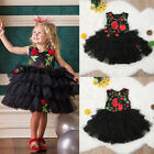Princess Toddler Kids Baby Girls Dress Lace Tulle Floral Party Embroidery Dress