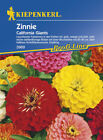 Zinnia Red Lime + Green Lime