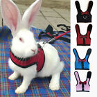 Extra Small Dog Cat Puppy Harness No Pull Soft Mesh Comfort Padded Vest Leash