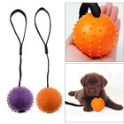 Rubber Ball On String Indestructible Ball Rope Pull Throw Dog Tug Toy Chew Toy