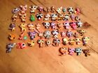 Littlest Petshop Lot Of Various Pets 54 In Total