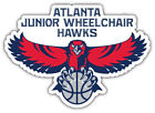 "Atlanta Hawks NBA Basketball Car Bumper Sticker Decal ""SIZES"" ID:5 on eBay"
