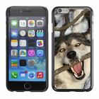 Hard Phone Case Cover Skin For Apple iPhone Crazy dog bites branch o