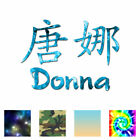 Chinese Symbol Donna Name - Decal Sticker - Multiple Patterns & Sizes - ebn2058