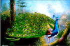 Animal beautiful peacock colourful trees HD Print on Canvas oil panting 16x24