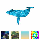 Humpback Whale - Vinyl Decal Sticker - Multiple Patterns & Sizes - ebn902