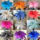 Kyпить Wholesale 10-200 pcs high-quality natural ostrich feathers 6-24 inch/15-60cm на еВаy.соm