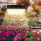 1000W 300LED Grow Light Full Spectrum Flower Indoor Hydroponic Plant Lamp Panel