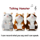 Kyпить Talking Hamster Plush Toy Lovely Speaking Sound Record Repeat Kids Toy Cute Gift на еВаy.соm