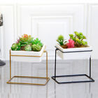 6'' Desktop Planter Vase Rotatable Cactus Succulent Planter Pot with Metal Stand
