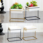 Modern Ceramic Succulent Plant Pots w/ Iron Stands for Home Office Desktop Decor