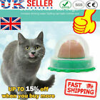 Cat Treats 'Kitty Chups' Healthy Cat Snacks Catnip Sugar Candy UK hot